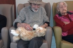 Residential care home Hyde, Newton the Cat